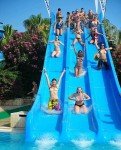 Water slide flasher babes